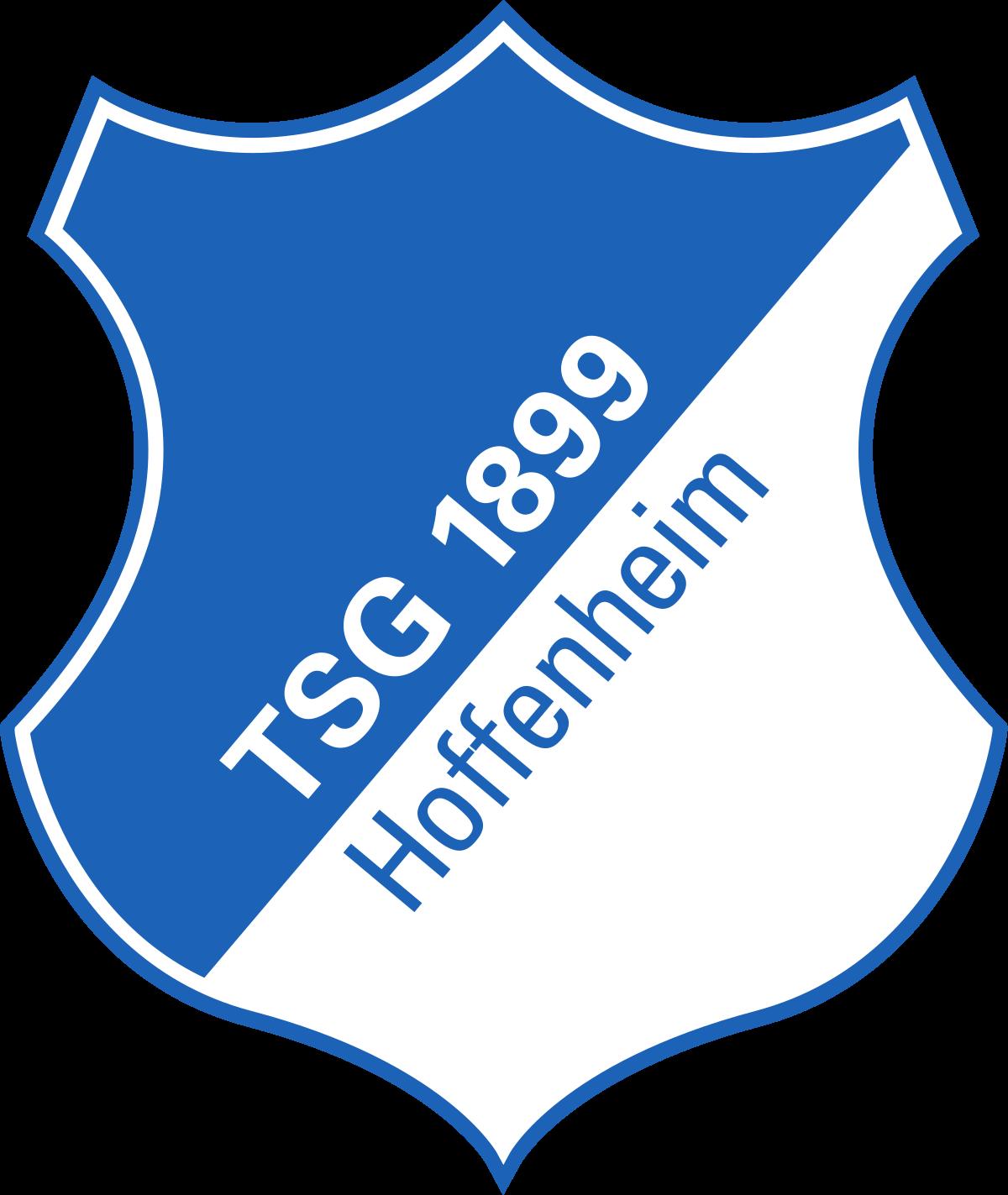 hoffenheim population